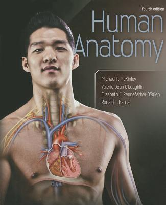 Human Anatomy By McKinley, Michael/ O'loughlin, Valerie/ Harris, Ronald/ Pennefather-o'brien, Elizabeth